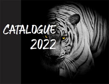 Каталог Promo Idea 2022 - пластмасови и метални химикалки, ключодържатели, запалки, шапки, чаши