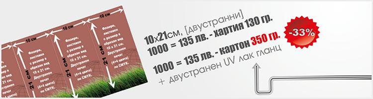 Флаер - 10х21см