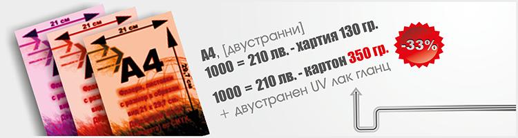Флаер - 21х29.7см
