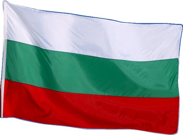 Знаме на Република България, Български, национален флагg