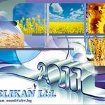 Дизайн на глави за календари на Pelikan LTD.
