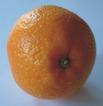 portokal.jpg