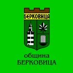 знаме Община Берковица