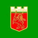 знаме Община Горна Оряховица